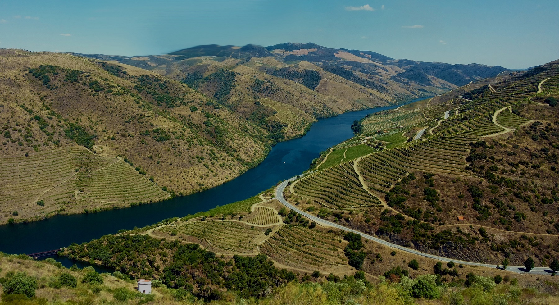 Passeio ao Vale do Douro saindo do Porto
